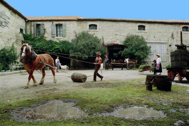 Vieux Mas à Beaucaire