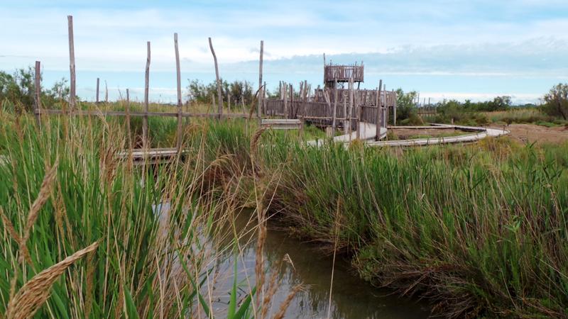 Point de vue sur la marette qui présente les différents paysages de la Camargue Gardoise
