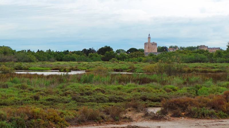 Paysage typique de Camargue avec Aigues Mortes.
