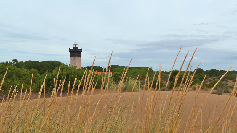 Le phare de l'Espiguette domine la plage.