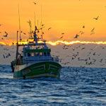 Défi de pêche au Grau du Roi