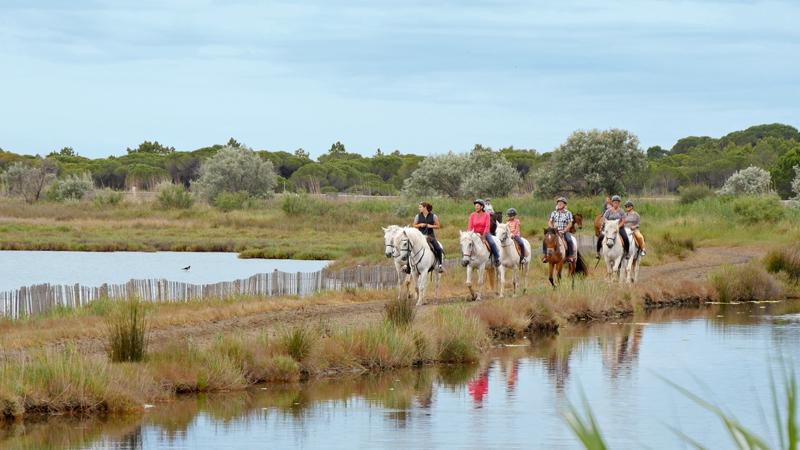 Promenade à cheval pour visiter les étendues sauvages de Camargue.