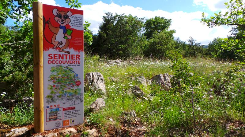 Suivez le lérot sur le sentier découverte du bois de Païolive