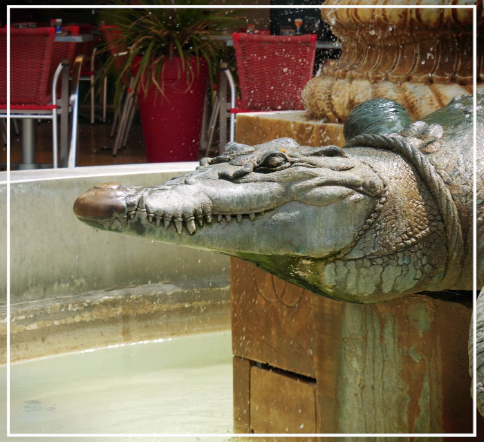 La Fontaine au Crocodile, Place du Marche