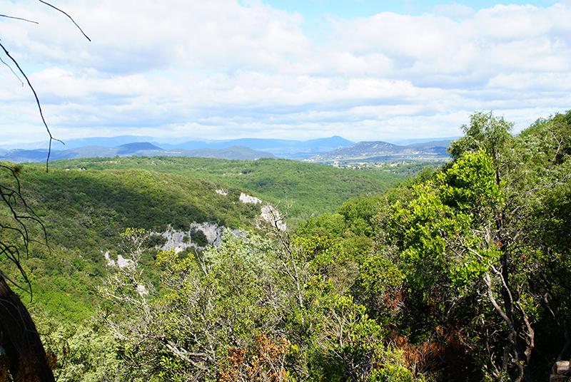 Grotte-de-la-Salamandre-Gard-4